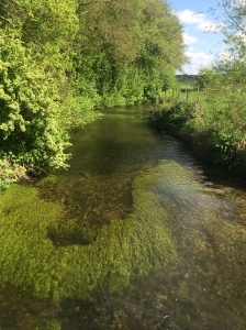 The River Loddon.