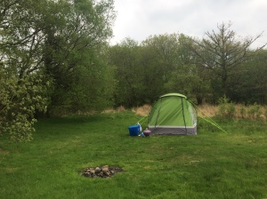 Our pitch for the weekend
