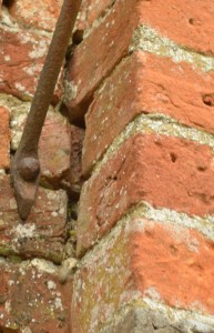 The blue tit nest was in the gap in the wall next to the base of the bracket