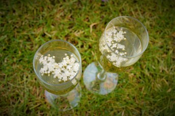 Elderflower prosecco- lazy girl wild cocktails