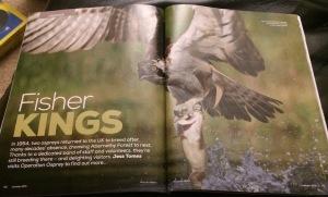 Reading a wild magazine