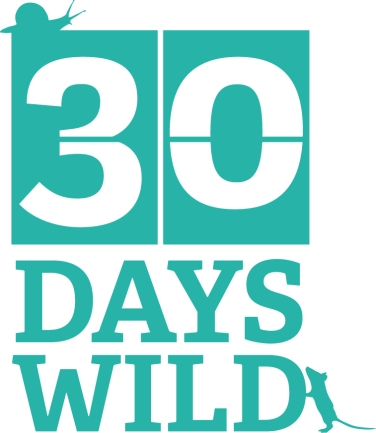 30DAYSWILD_ID2 teal