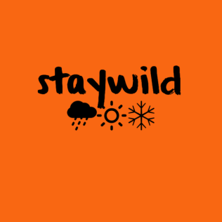 23staywild0a0a28cloud2928sun2928snowflake29-default